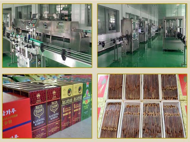 Korea Kaesong Koryo Insam Trading Corporation