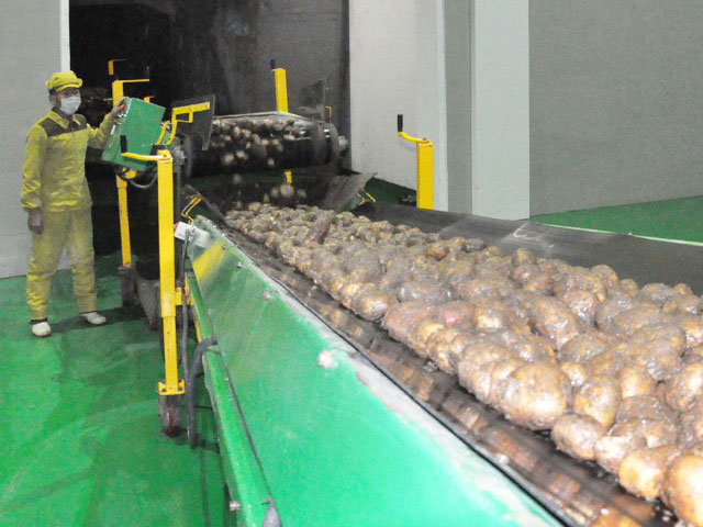 Innovation in the potato farina production by giving priority to science and technology